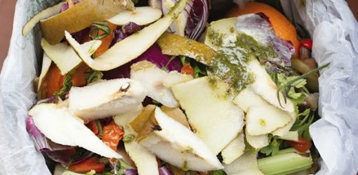Learn About Food Waste